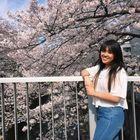 Ivy Nguyen Japan