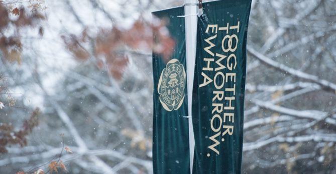 Snowy Ewha