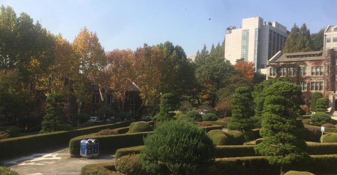 Yonsei in the Fall